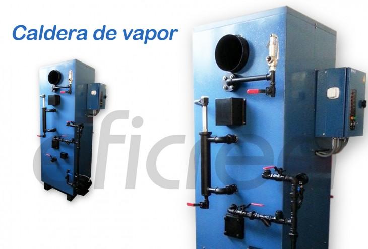 caldera_vapor_eficrea