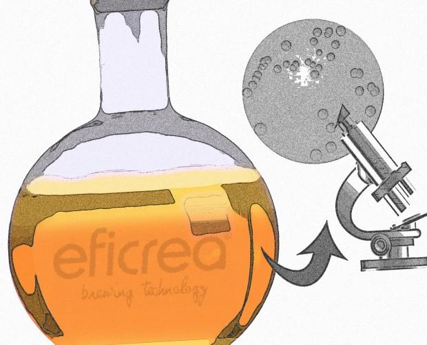 repitch_eficrea